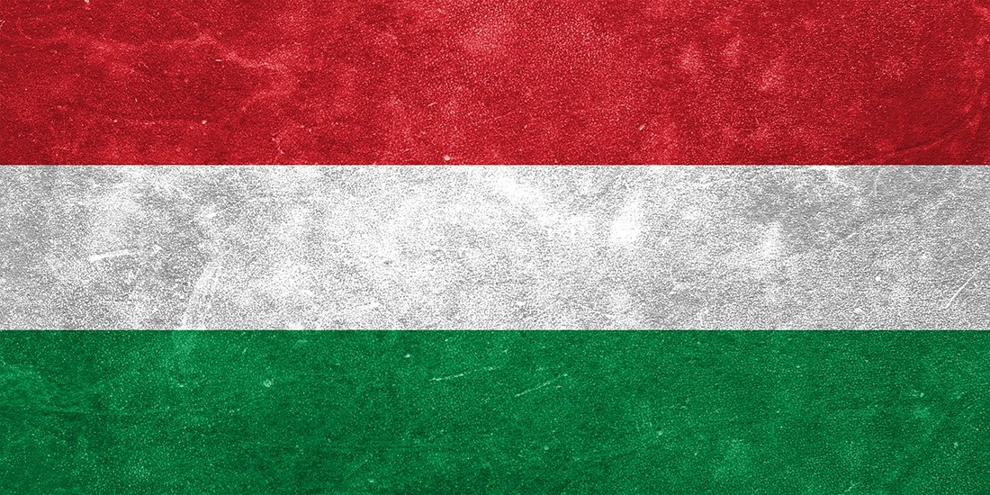Hungarian 'ethical hacker' faces eight-year prison sentence
