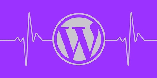 Heard the chat? WordPress plugin needs patch to plug