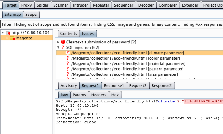Using Burp Suite to audit and exploit an eCommerce