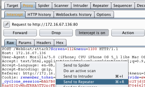 OWASP_Injection_6