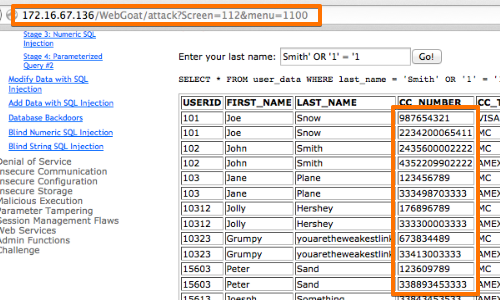 OWASP_Injection_9